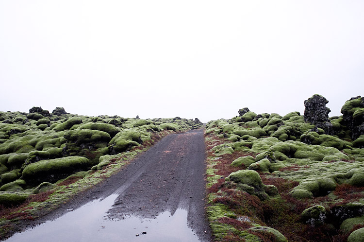 iceland_on_the_road_DSF1259
