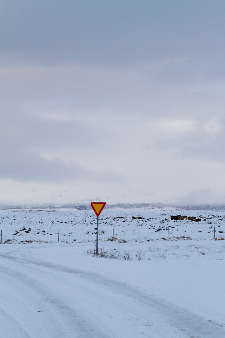 iceland_on_the_road_MG_3420