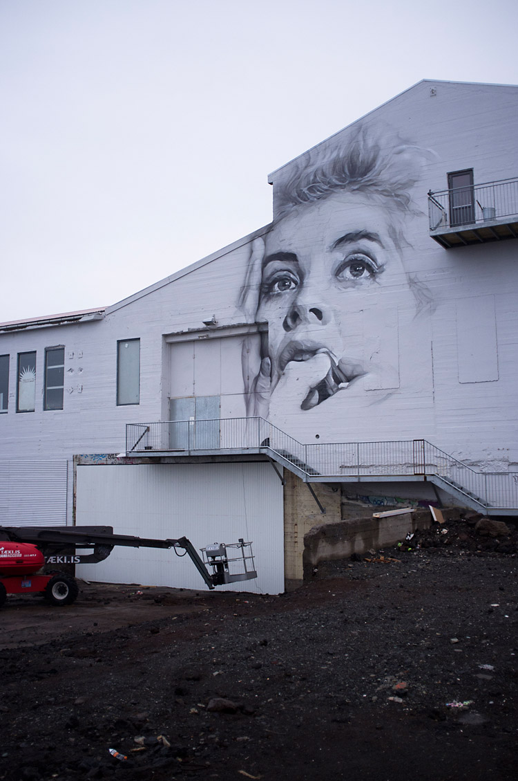 streetart_reykjavik_DSF1294