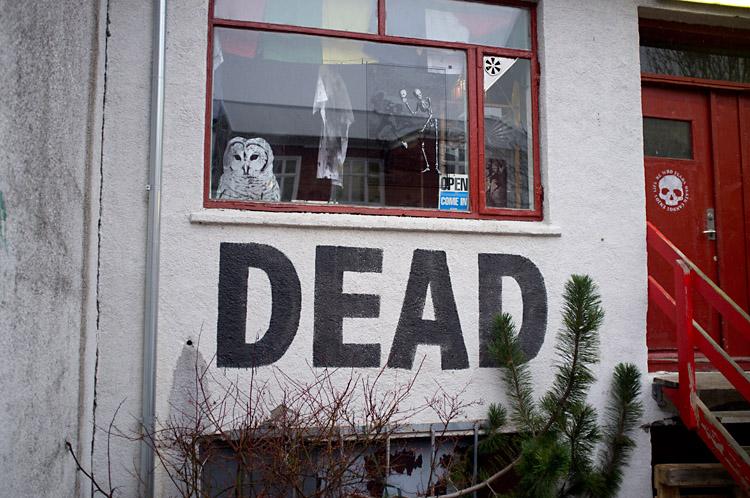 streetart_reykjavik_DSF1314