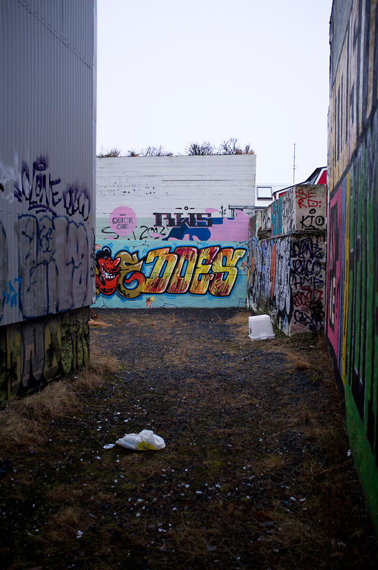 streetart_reykjavik_DSF1318