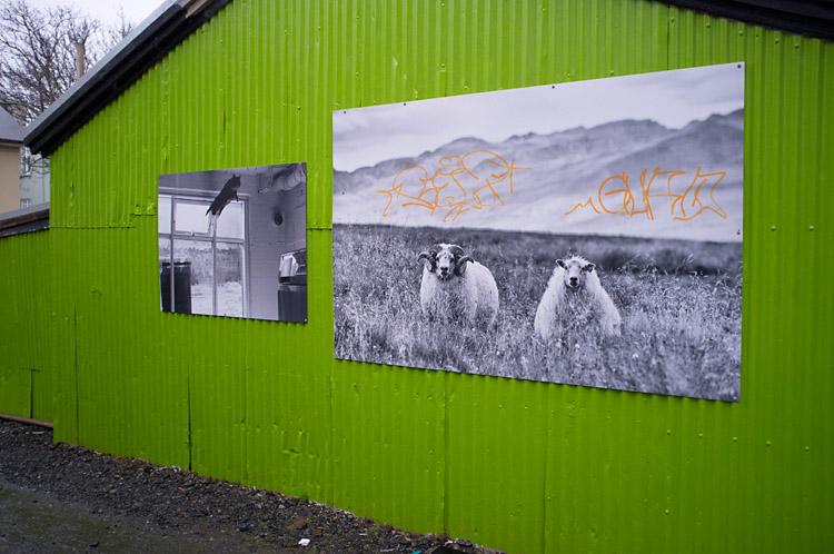 streetart_reykjavik_DSF1360