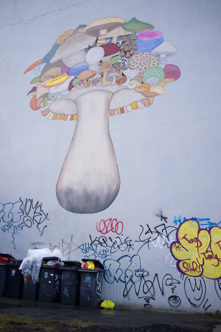 streetart_reykjavik_DSF1585