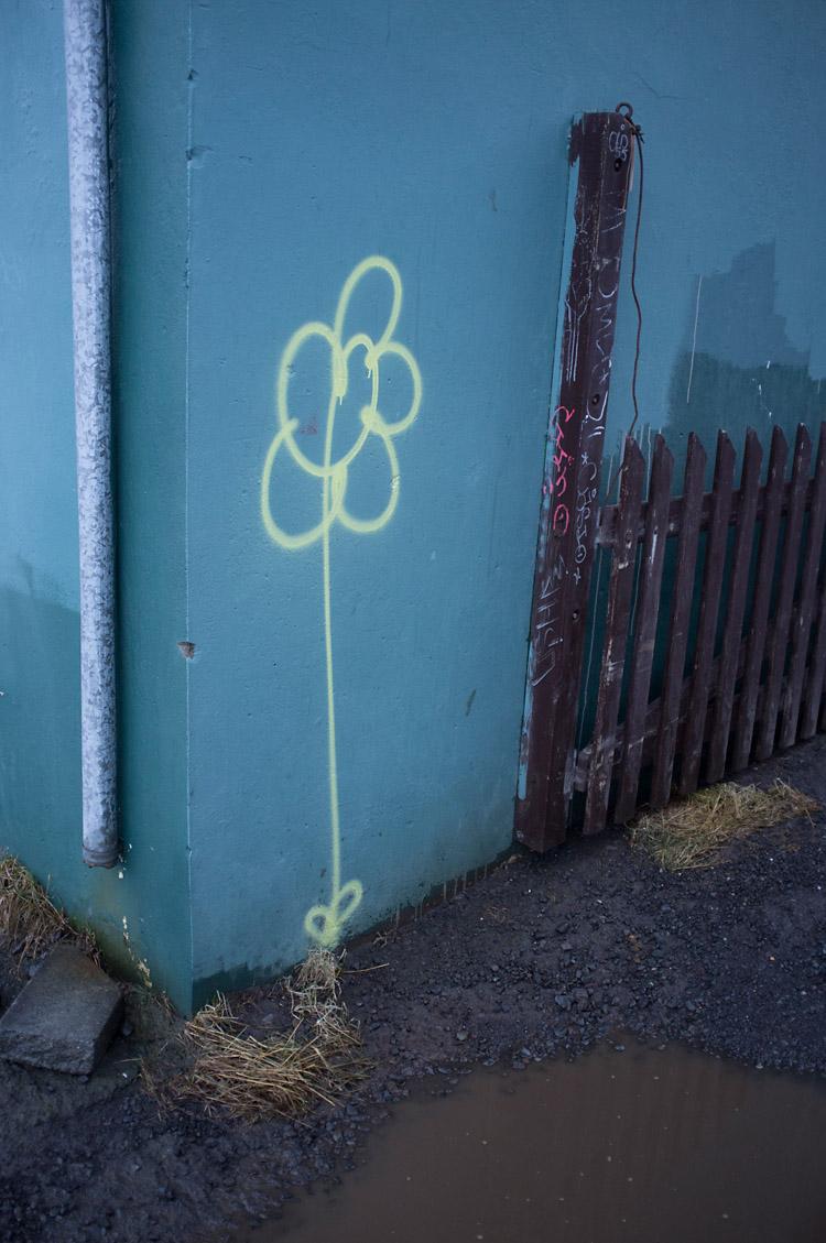 streetart_reykjavik_DSF1589