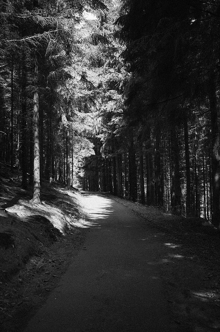 ruhrtalradweg_DSF2127