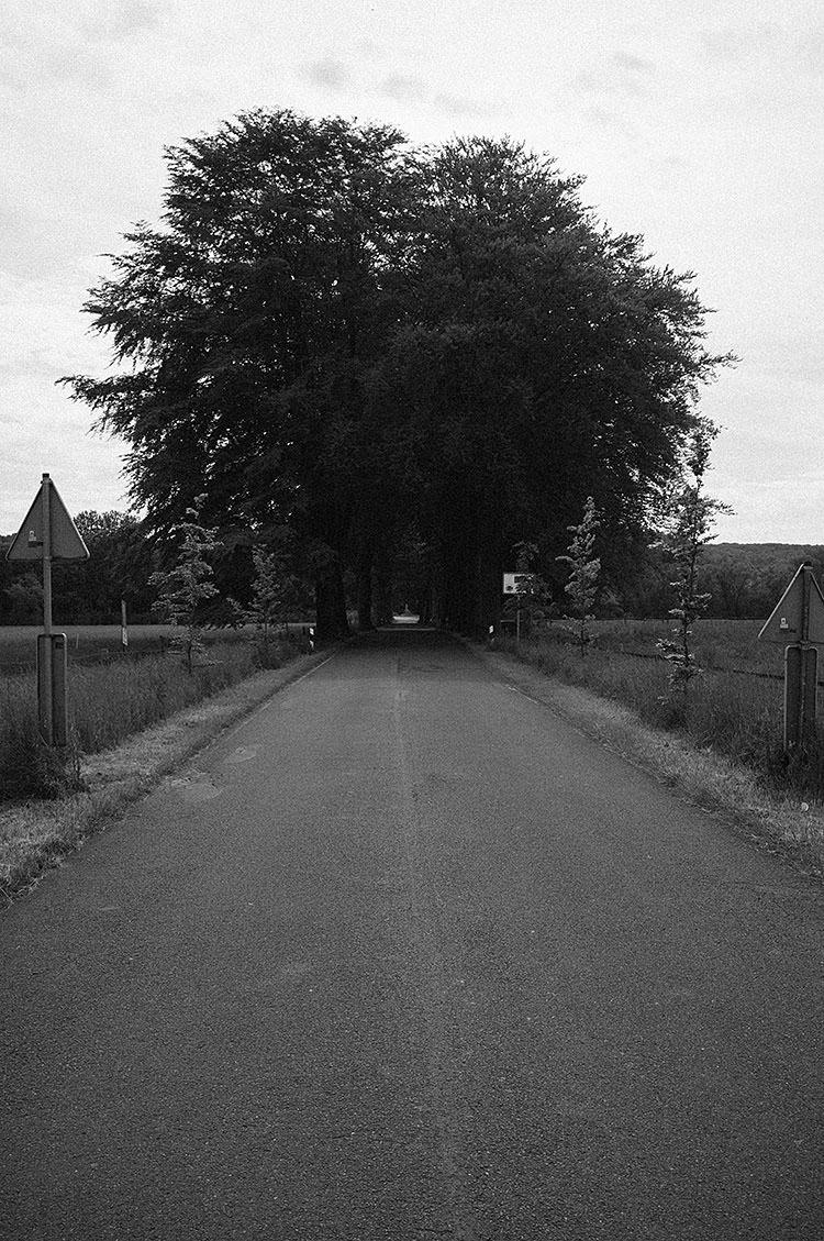 ruhrtalradweg_DSF2154